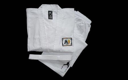 Kampfsport Taekwondo Anzug
