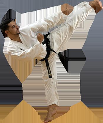 Taekwondo Yop Chagi